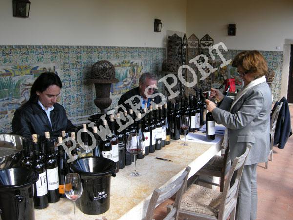 wyjazdy_motywacyjne_dla_firm_szlakiem_win_portugalia-(1)